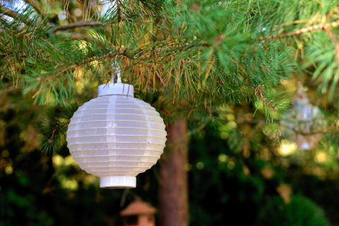 Lampy zewnętrzne – jakie są ich rodzaje i na co zwracać uwagę przy wyborze?
